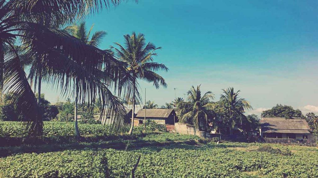 Zona rural de Lombok