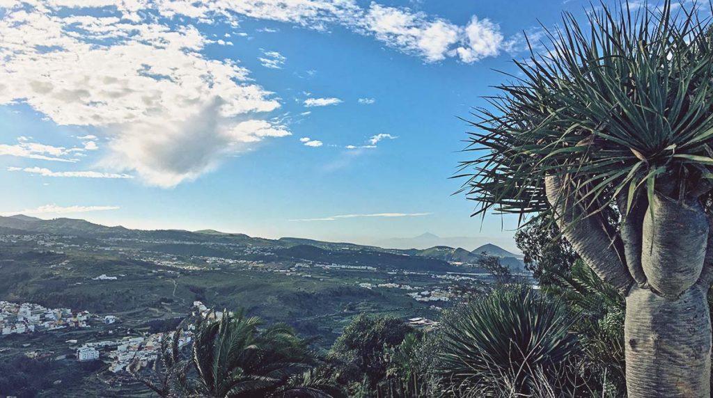 Vistas desde la montaña de Arucas