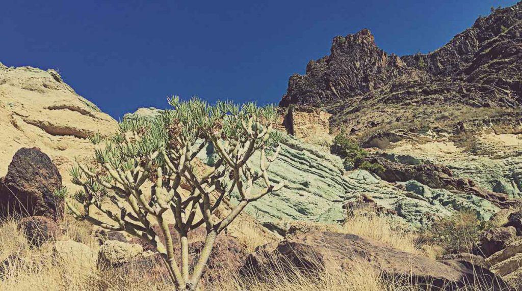 Colores de los Azulejos de Veneguera. Gran Canaria