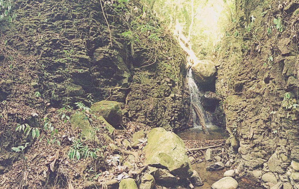 Cascada Santuario Ecológico. Monteverde, Costa Rica