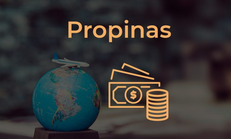 Propinas