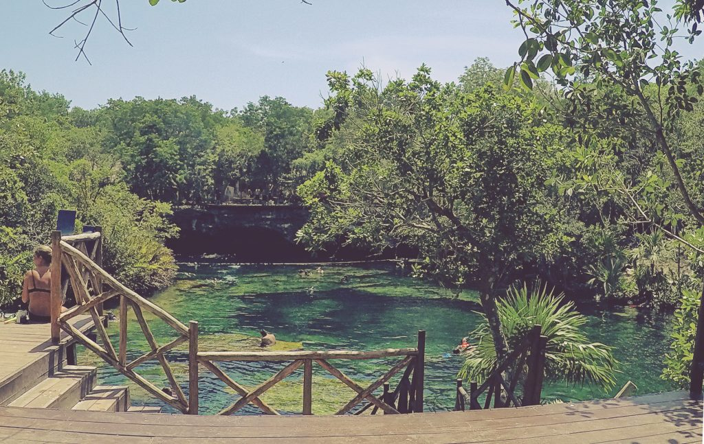 Cenote Jardín del Edén. Cerca del complejo Barceló y la carretera 307