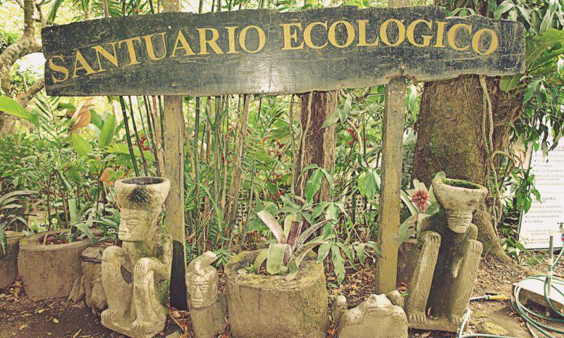 Santuario Ecológico. Monteverde, Costa Rica