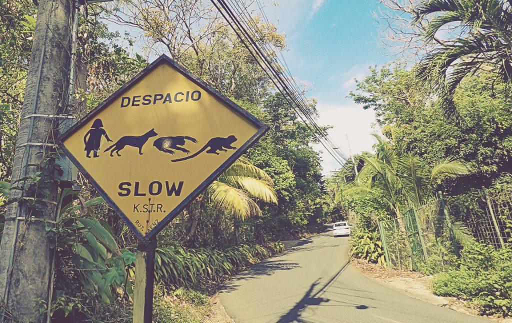 Este no es el sendero a la playa de Biesanz (Manuel Antonio), pero te da una idea de lo que te puedes encontrar en los alrededores