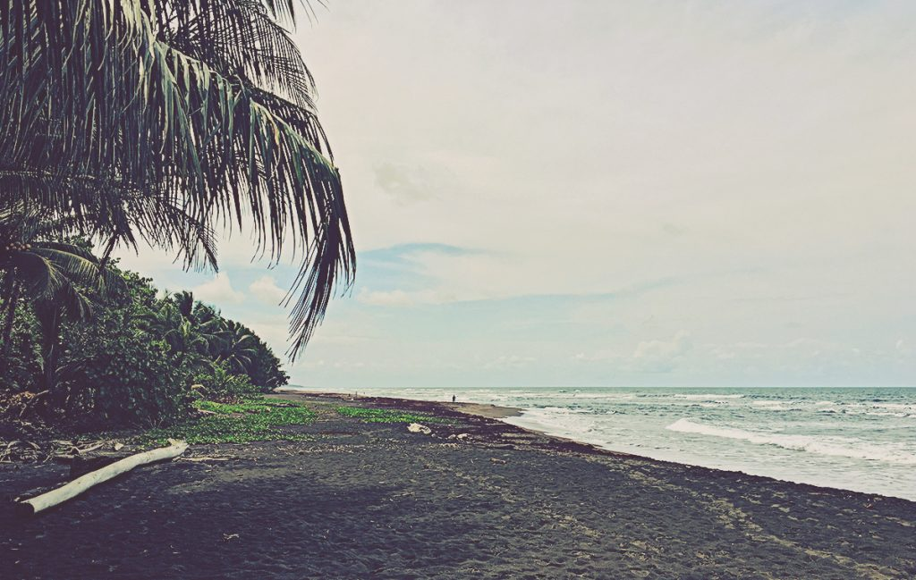 Playa donde van las tortugas a desovar. Tortuguero, Costa Rica