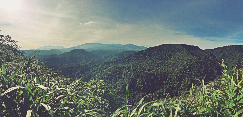 Parque Nacional Braulio Carrillo. Costa Rica