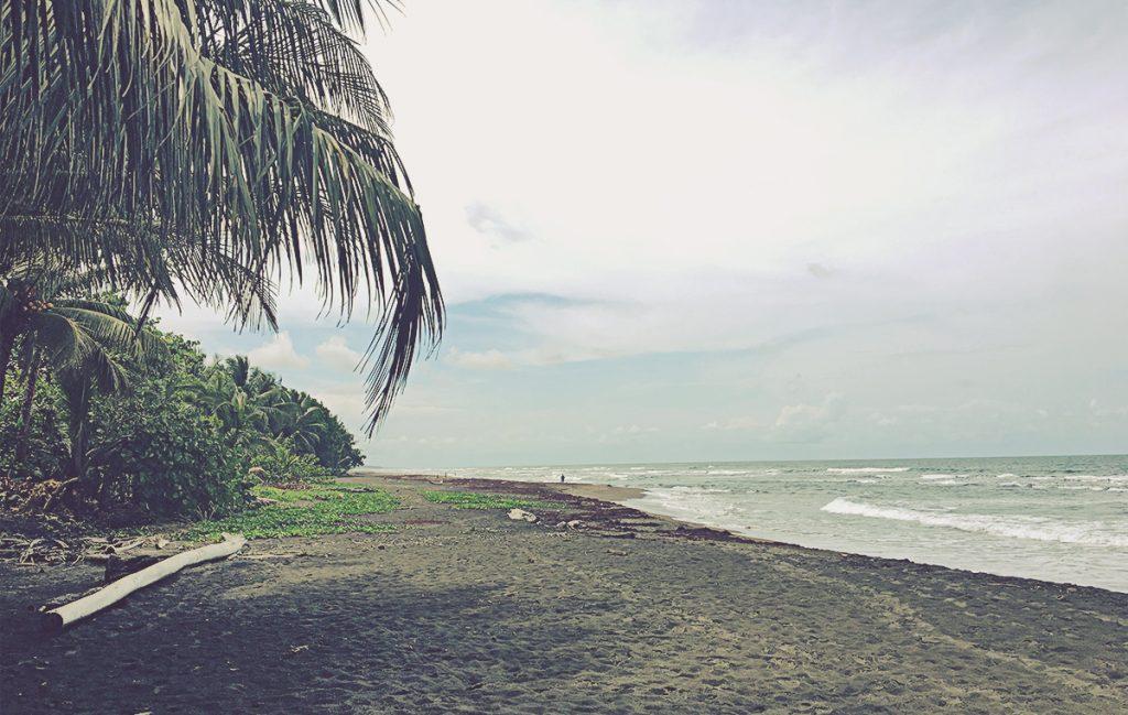 Playa de Tortuguero. Costa Rica