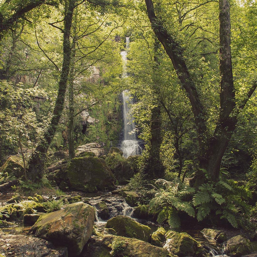 Cascadas-de-Oneta-Firvía